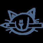 Catwork - Webdesign, das großartig ankommt!