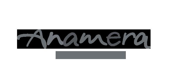 Logo Anamera Premium Cars